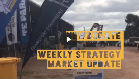 Weekly Strategy Market Update