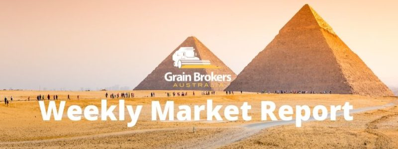 Egypt's demand for wheat and corn is growing…