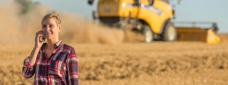 Woman in grain field on a call | Grain Brokers